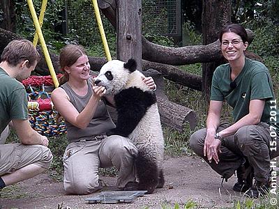 FU Hu sit schon ganz schön viel gewachsen! Markus (li), Renate mit Fu Hu (Mitte), Eveline (re), 15. Juli 2011